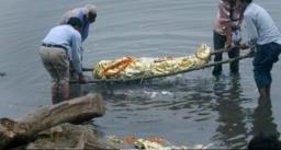 गंगा में मिल रही लाशें अब तक 110 से भी ज्यादा लाशें मिली