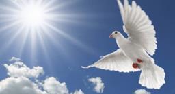 साल 1982 में पहली बार मनाया गया विश्व शांति दिवस