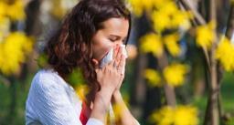 एलर्जी का मौसम, 70% तक बढ़ जाते हैं एलर्जी के मामले