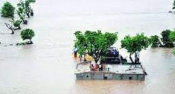 गुजरात में बाढ़ आने से 70 से ज्यादा लोग मरे