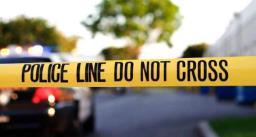 अमेरिका में भीड़ पर फिर फायरिंग, दो लोगों की मौत, 25 घायल